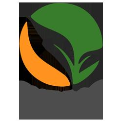 Cut Rag